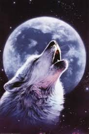 wolf moon with the serpent 13 moon mysteries of