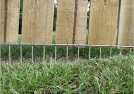 Backyard Fencing Cost - how much does a dog fence cost searching for best 25 dog fence