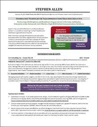 Example It Resumes by Infographic Resume Example For Executive Resume Examples