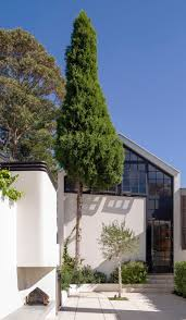 gallery of bougainvillea row house luigi rosselli 10