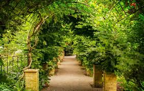 Ventnor Botanic Gardens Drop In Visitor Numbers At Botanic Garden Since Changing
