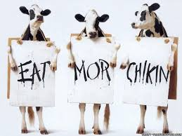 cow funny ads wallpapers u2013 thought rot
