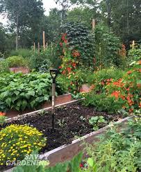 1294 best garden tips u0026 tricks images on pinterest garden tips