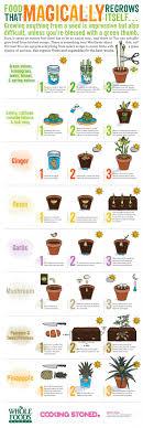 best 20 herb planters ideas on pinterest growing herbs 4274 best green garden container ideas images on pinterest
