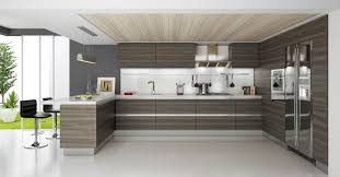Contemporary Kitchen Cabinet Doors Round Shade Pendant Lights Double Built In Oven Pine Wood Bar