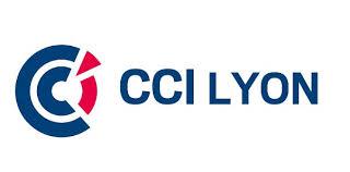 chambre de commerce de lyon la cci organise un concours vidéo pour les entrepreneurs