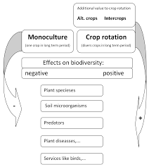 underutilized crops and intercrops in crop rotation as factors for