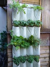 wall herb garden gardening ideas