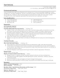 J2ee Analyst Resume Budget Analyst Cover Letter Image Collections Cover Letter Ideas
