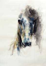 13 drawing images horses drawings horse