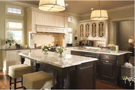 High End Kitchen Cabinets Brands Enthralling Kitchen Astonishing High End Cabinets Brands On Unique