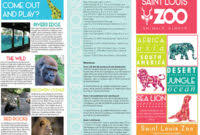 zoo brochure template zoo brochure template best and professional templates