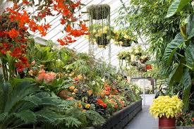 Garden Botanical Wellington Botanic Garden Wellingtonnz