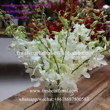 Wholesale Flowers Online Order Wholesale Flowers Online Source Quality Order Wholesale