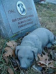 headstones for dogs best 25 headstone ideas ideas on cemetery