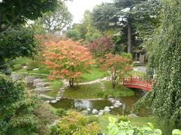 amenagement jardin moderne amenagement petit jardin zen dootdadoo com u003d idées de conception
