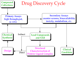 what is concept drug design wikipedia