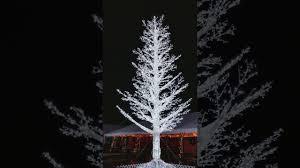 white tree gaylord opryland hotel youtube