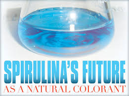 natural food color demand boosting spirulina sales algae industry