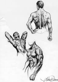 human body sketches by graphitecat sketches and anatomy drawing