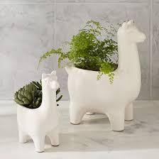 ceramic llama planters west elm