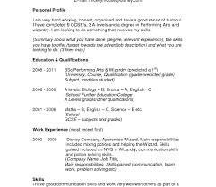 profile exles for resumes resume template profile exles for resumes writing summary