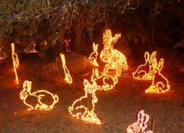 phoenix zoo lights members only in phoenix at zoolights