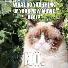 Grumpy Cat Yes Meme - the 12 cats of christmas grumpy cat catster