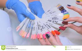 nail technician shows the color palette of nail services in beauty