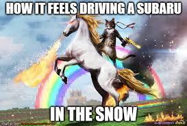 Unicorn Meme - cat riding unicorn meme generator imgflip