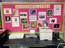 Interior Design Vocabulary List by Animal Adaptations Vocabulary Bulletin Board Teaching Ideas