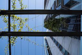 vertical trellis innovative rigging