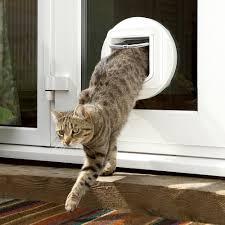 catflap in glass door amazon com sureflap cat flap mounting adaptor white pet