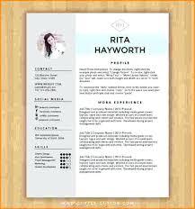 resume format word cv sles free insrenterprises ideas collection resume format for