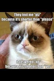 Meme Copyright - best grumpy cat the 50 best hilarious grumpy cat memes copyright