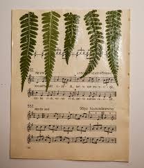 decoupage home decor fern leaf wall art home decor wall decor botanical art