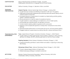 sle student resume summary statements resume sles for college students in india ixiplay free