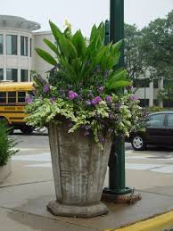 commercial flower pots solidaria garden