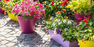 pots and planters down to earth living