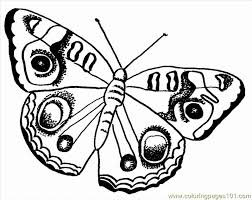 free printable coloring page butterfly pages insects 504262