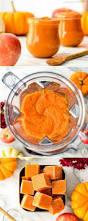 homemade apple u0026 pumpkin baby food puree joyfoodsunshine