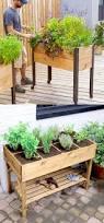 12078 best garden ideas u0026 projects images on pinterest gardening