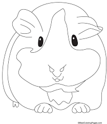 guinea pig coloring pages kids coloring