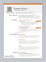 programmer resume example 10 computer example software developer