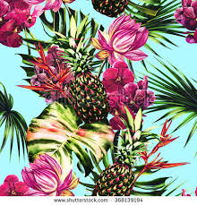 pink pineapples stock images royalty free images u0026 vectors