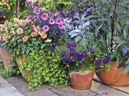 container garden ideas fresh on custom potted flowers plants