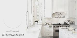 Benjamin Moore Cabinet Paint White by Kitchen New Best White Paint For Kitchen Cabinets Benjamin Moore