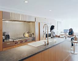 Ann Sacks Kitchen Backsplash by Modern Rowhouse Renovation In New York Photo 5 Of 7 Dwell
