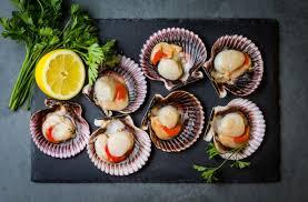 cuisiner des coquilles jacques surgel馥s recettes aux coquilles jacques