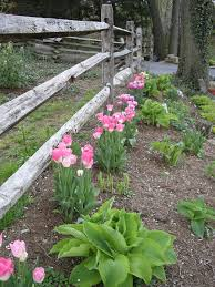 Rustic Landscaping Ideas by 15 Best Landscaping Ideas Images On Pinterest Split Rail Fence